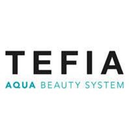 Изображение для производителя TEFIA